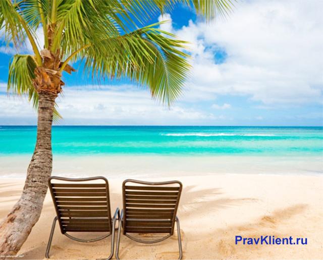 Компенсация за неиспользованный отпуск без увольнения: как получить