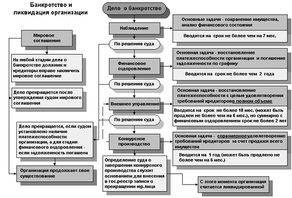 Банкротство некоммерческой организации с долгами: этапы процедуры и их пошаговое описание